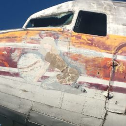TWA Emblem. Removed to be restored.